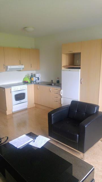 הסלון והמטבח במלון