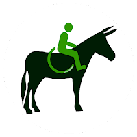 Logo Handiane France