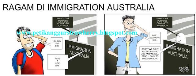 kerja di australia , kerja petik buah australia