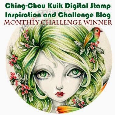 Challenge Winner !