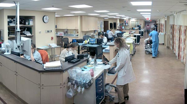 The Arts Sciences And Medicine