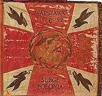 WW2 Standard 1st Polish Parachute Brigade