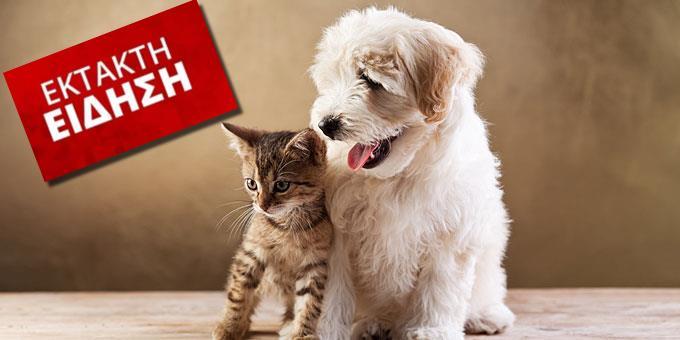 Αποσύρεται μετά το σάλο το νομοσχέδιο για τα ζώα – Δήλωση Αποστόλου
