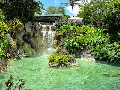 Restaurant du Jardin botanique de Deshaies au sommet de la cascade