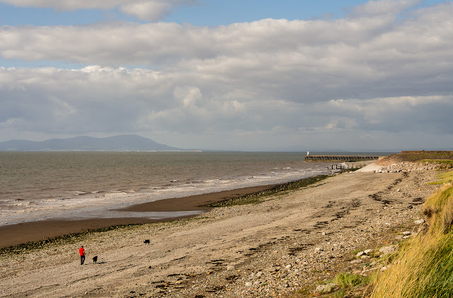 Photo of a dog walker on Grasslot Beach, Maryport