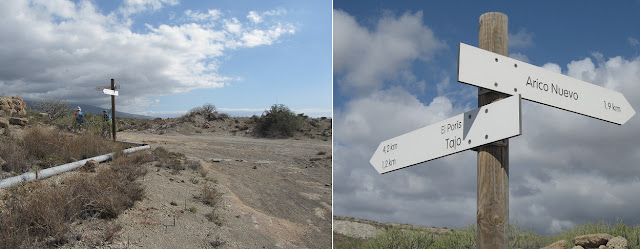 Mar a Cumbre - Pista de tierra - PR-TF-86 - Tenerife - Islas Canarias