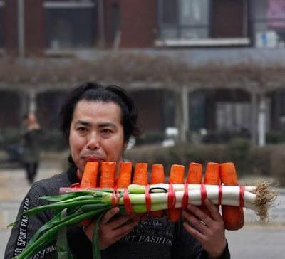 Fotos de zanahoria