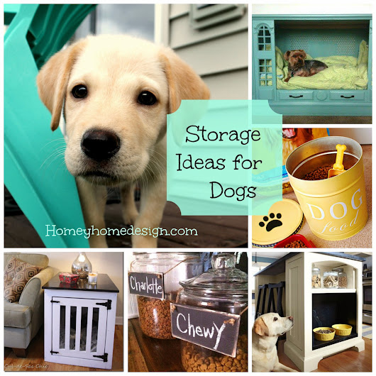A New Puppy and Storage Solutions