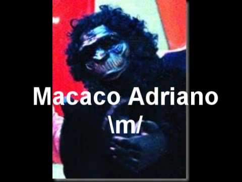 ... do Macaco Adriano