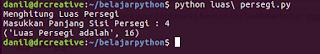 Program Menghitung Luas Persegi Python