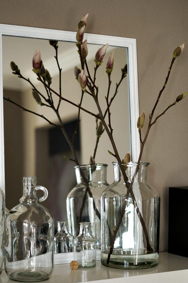 Ein Magnolienweig vor einem Dekospiegel