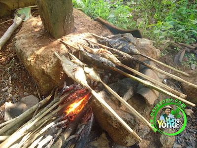 LIBURAN KELUARGA KE SAWAH : Ngaliwet dan bakar ikan mas