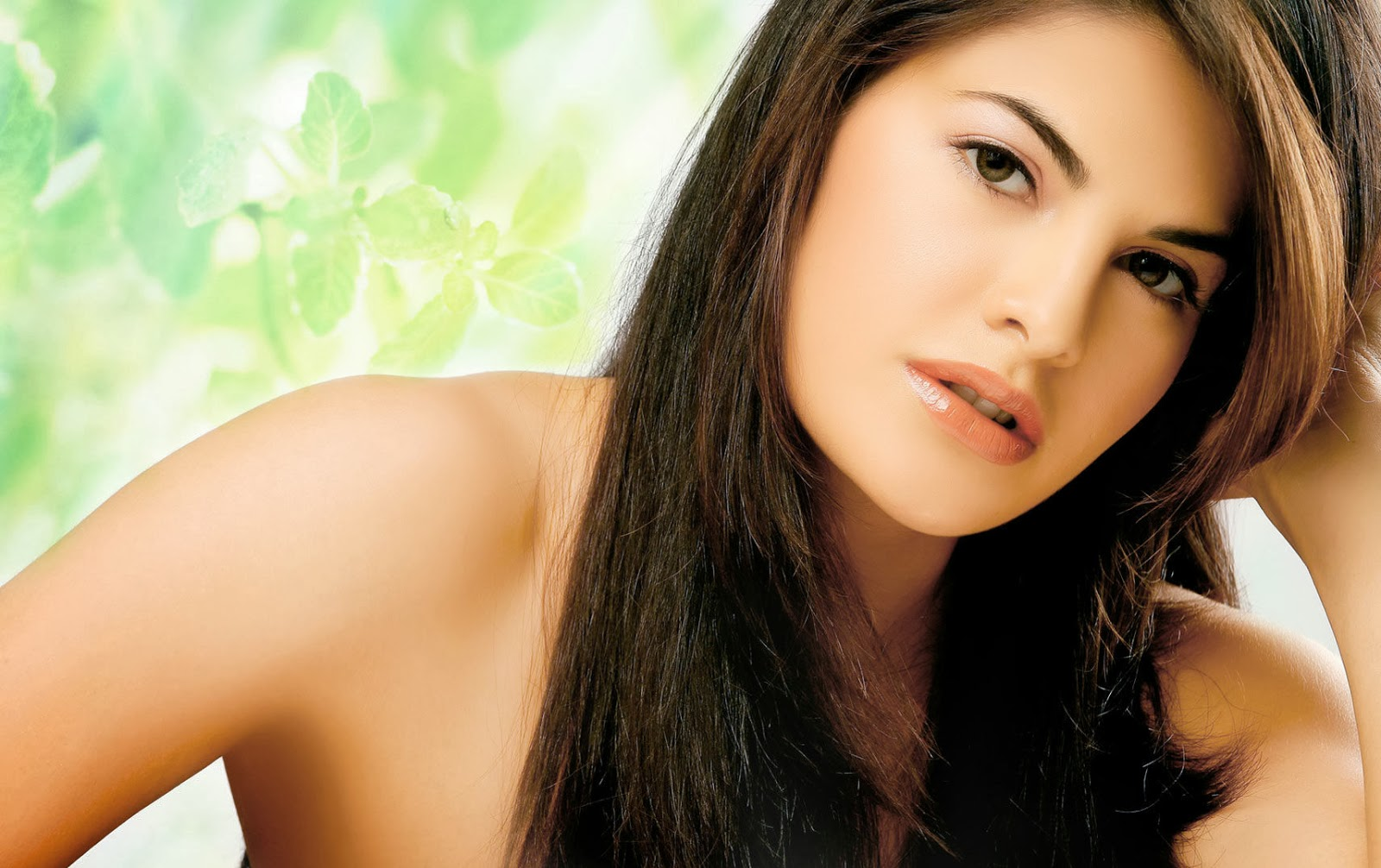 Jacqueline Fernandez Heroine Wallpapers  Bollywood Wallpapers  Free, Hot, Sexy -5339