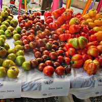 Tomato Festival Red Fire Farm Granby MA New England Fall Events
