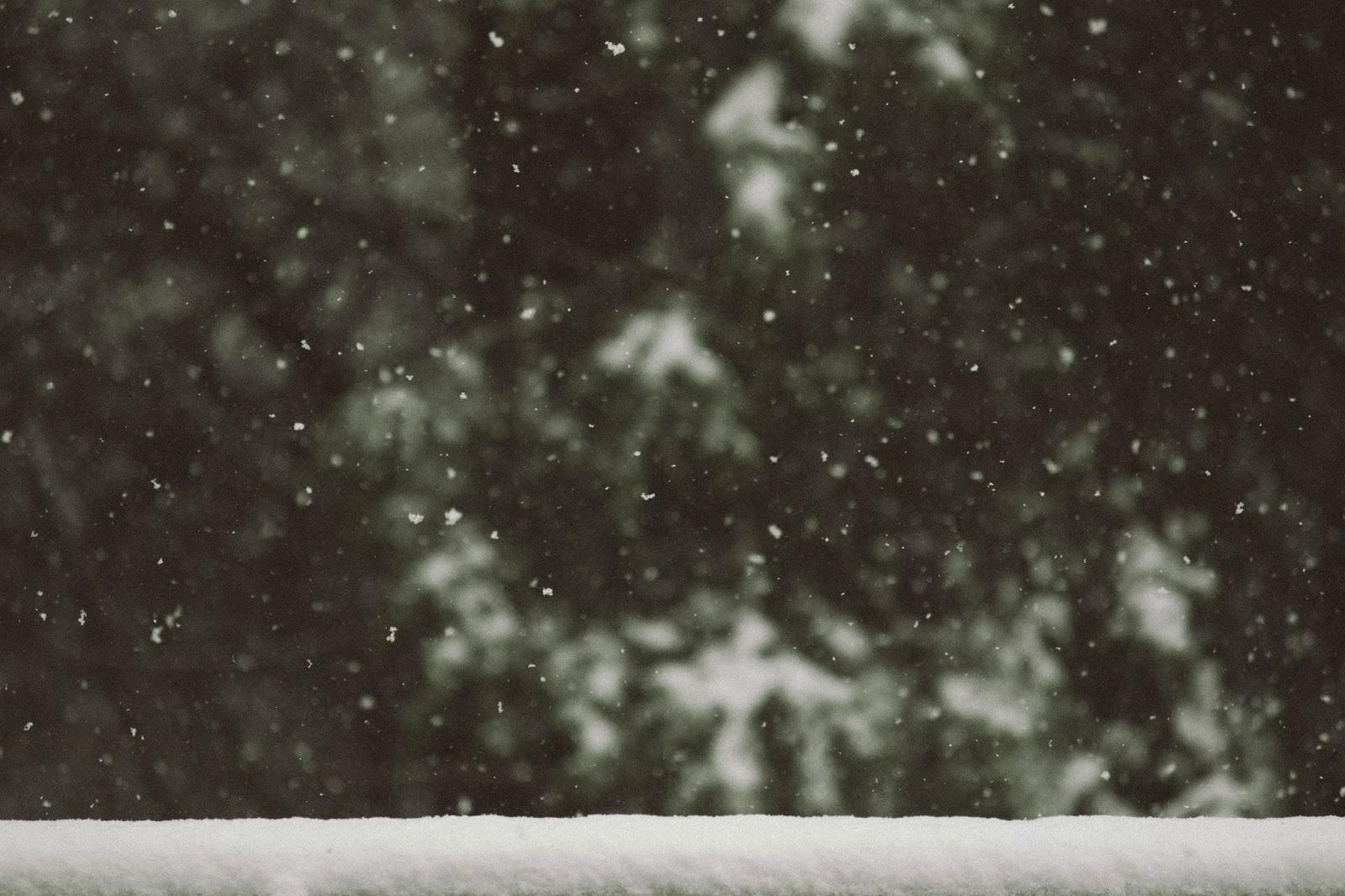 las i śnieg