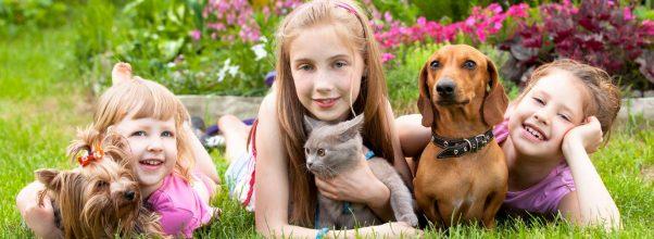 Mendidik anak dengan memelihara Binatang