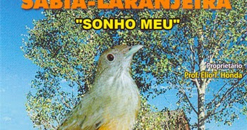 CD DO SABIA CANTO LARANJEIRA BAIXAR