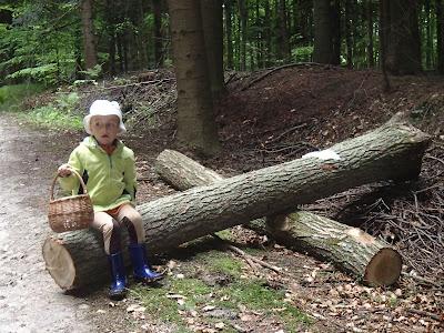 Las Bronaczowa, grzyby w maju, wiosenny spacer, zabawy w lesie