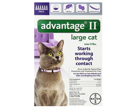 Hay collares antipulgas para gatos