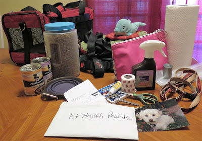 Items you should have in a Pet Emergency Go Kit #PetPrepared @HillsPet #sponsored