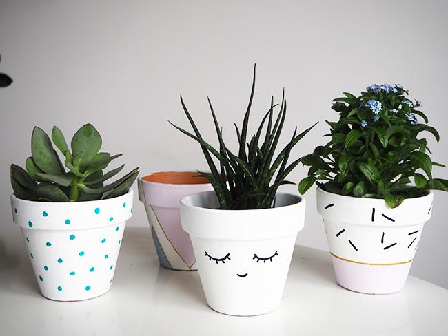 DIY Terra Cotta Flower Pots