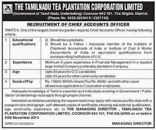 The Tamil Nadu Tea Plantation Corporation Ltd (TANTEA) Chief Accounts Officer Vacancy Notification (www.tngovernmentjobs.in)