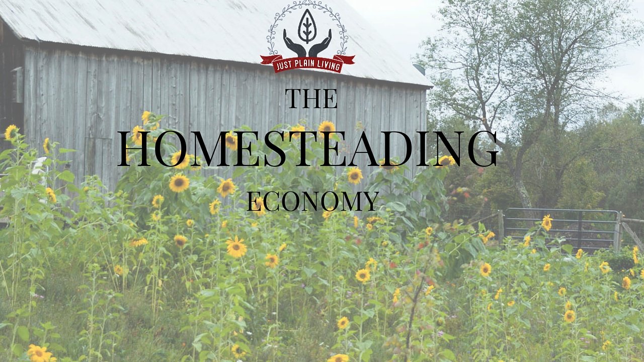 Can homesteading reduce your need for a large income?