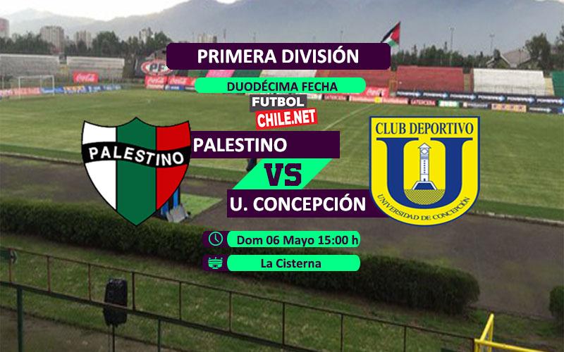 Palestino vs Universidad de Concepción: Previa, horario, dónde ver en vivo por TV y online por la Primera División