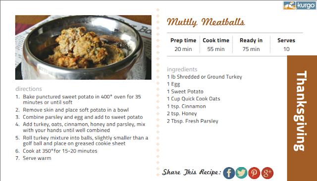 Mutty Meatballs recipe for your pup at Thanksgiving