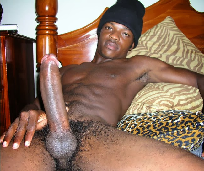 gay bottom take 12 inch cock