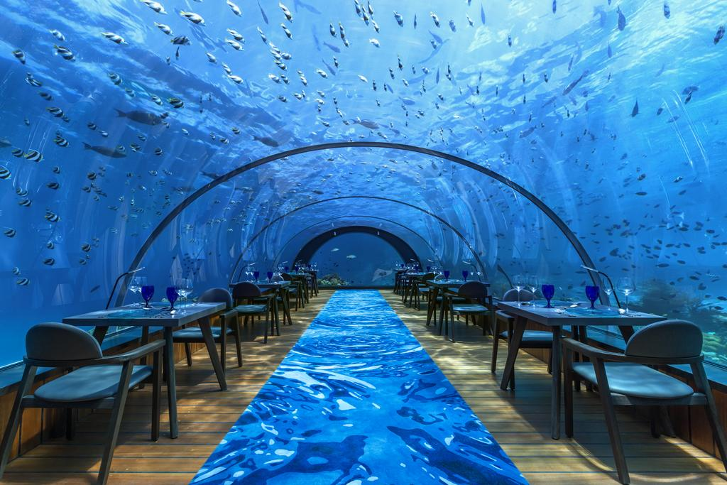The restaurant loama resort maldive