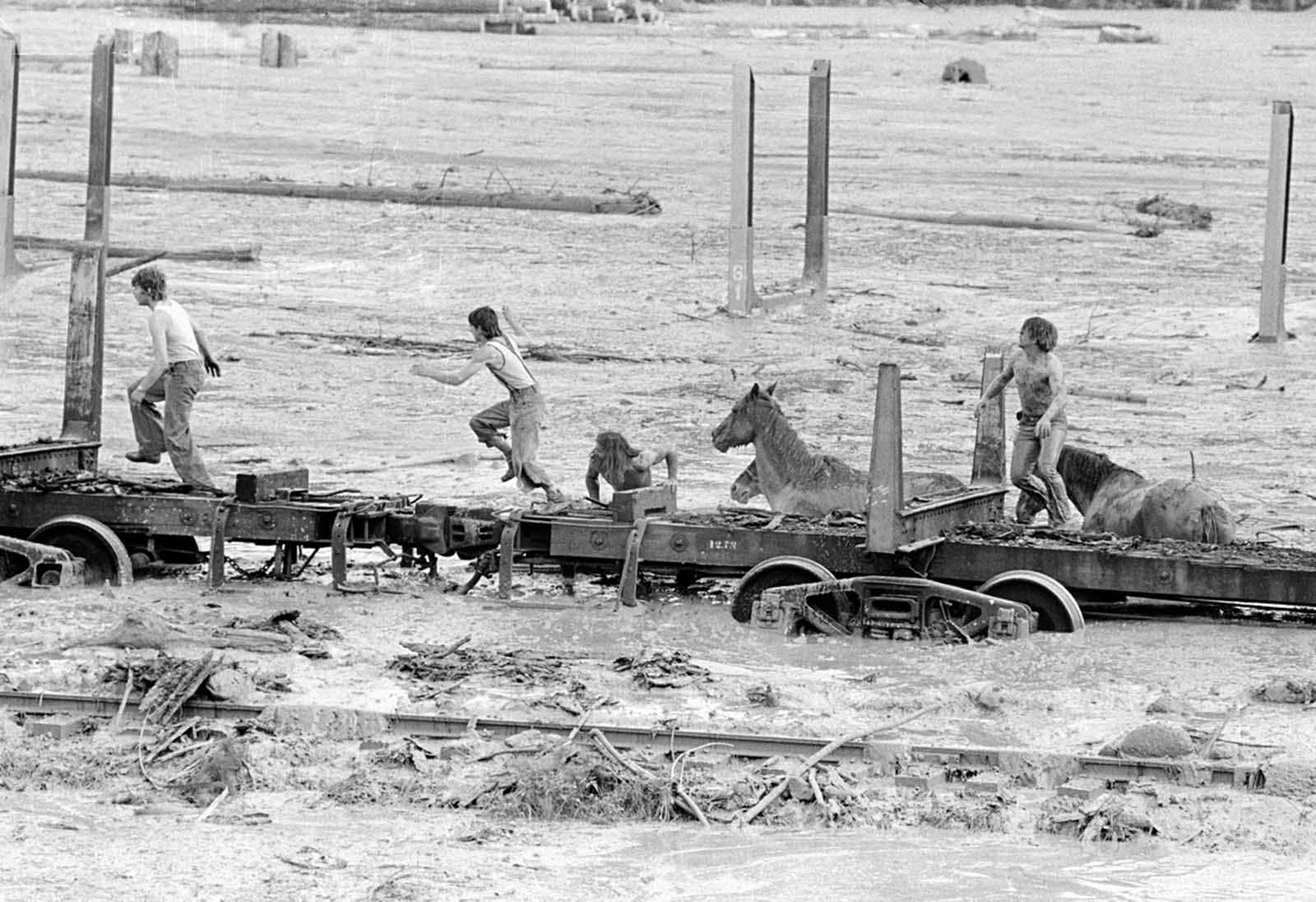Bob Brown (right) and John Brown climb onto railroad car, heading down the train along with two additional would-be horse rescuers, giving up their efforts as they flee for their lives as flood waters from the Toutle River begin a sudden rise on May 19, 1980. All four people reached safety but the horses are presumed to have drowned.