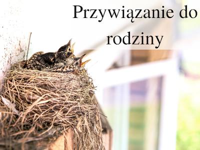 ptaki, ptasie gniazdko, słowiańkość, lifestyle, Rod, rodzina, Siem; źródło: gratisography
