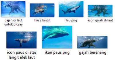 bahan gajah berenang di laut hiu di langit paus diatas gajah di dalam air PNG JPG