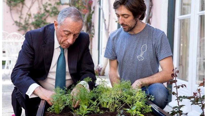 http://www.jornaldenegocios.pt/empresas/detalhe/marcelo-ja-tem-uma-cama-de-cultivo-no-palacio-de-belem