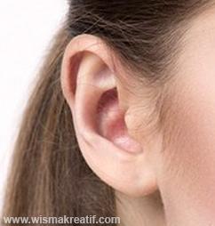 Hal Penting Yang Harus Diperhatikan Sebelum Membersihkan Telinga