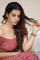 Diksha Panth in a Deep neck Short dress at Maya Mall pre release function ~ Celebrities Exclusive Galleries 043.JPG
