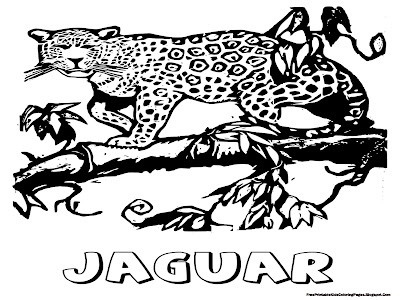 Jaguar Coloring Pages Free