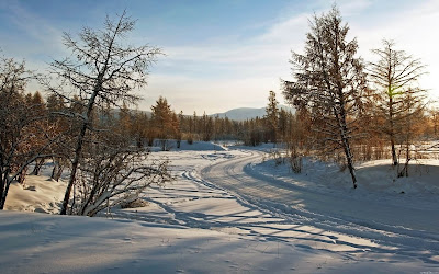 winter road widescreen hd wallpaper