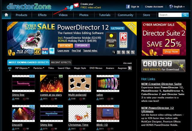 www.directorzone.com