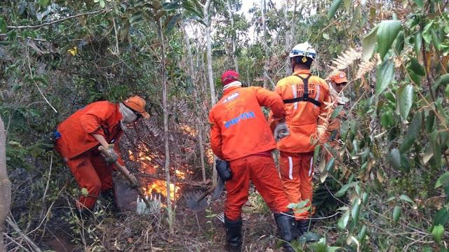 Brigadistas combatem as chamas na Serra da Tromba — Foto: Divulgação/Corpo de Bombeiros