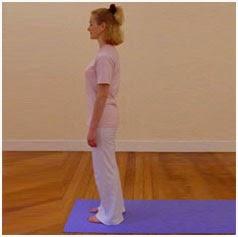 sehat dan bugar surya namaskar untuk yoga di pagi hari