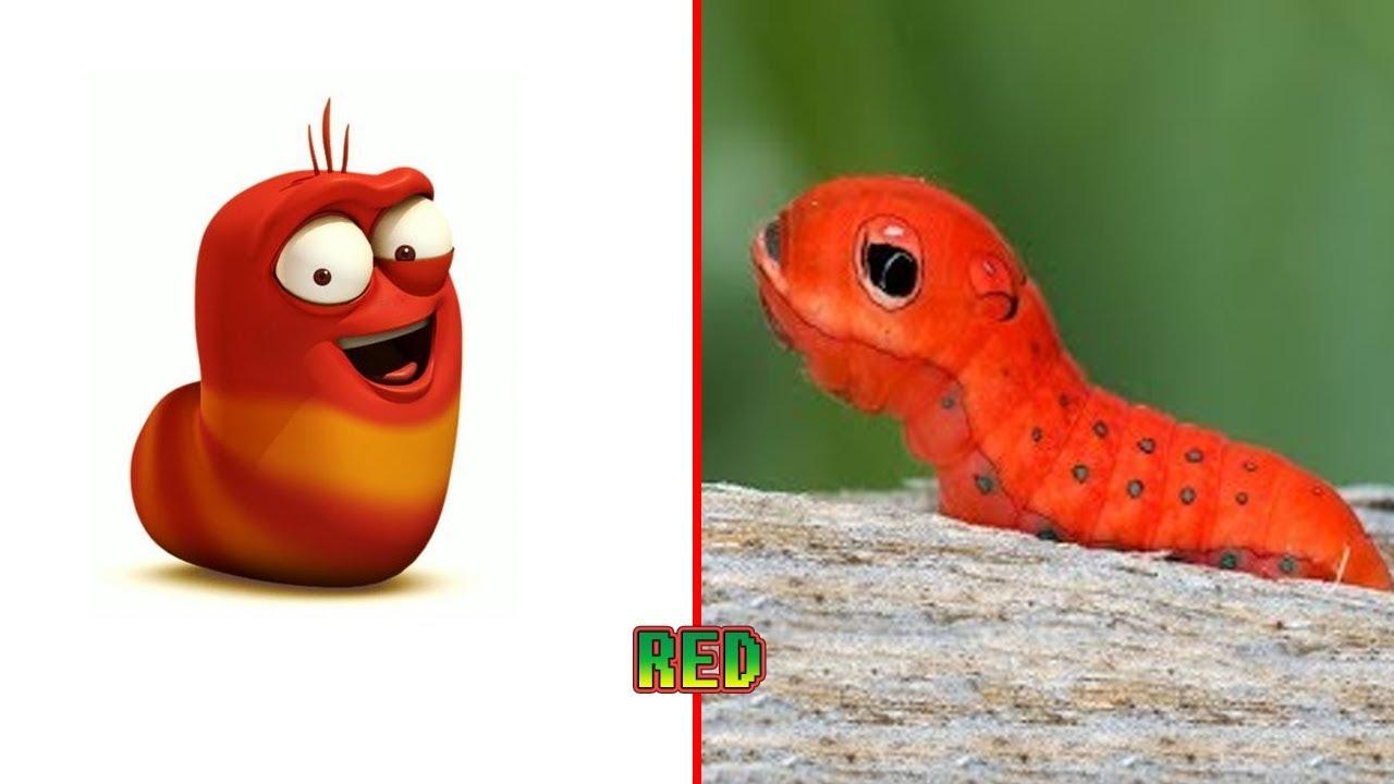 Kumpulan Gambar Kartun Bergerak Larva