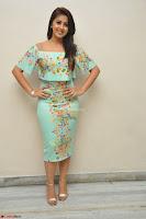 Nikki Galrani in Cute Dress Dress At Marakathamani Success Meet ~  Exclusive 008.JPG