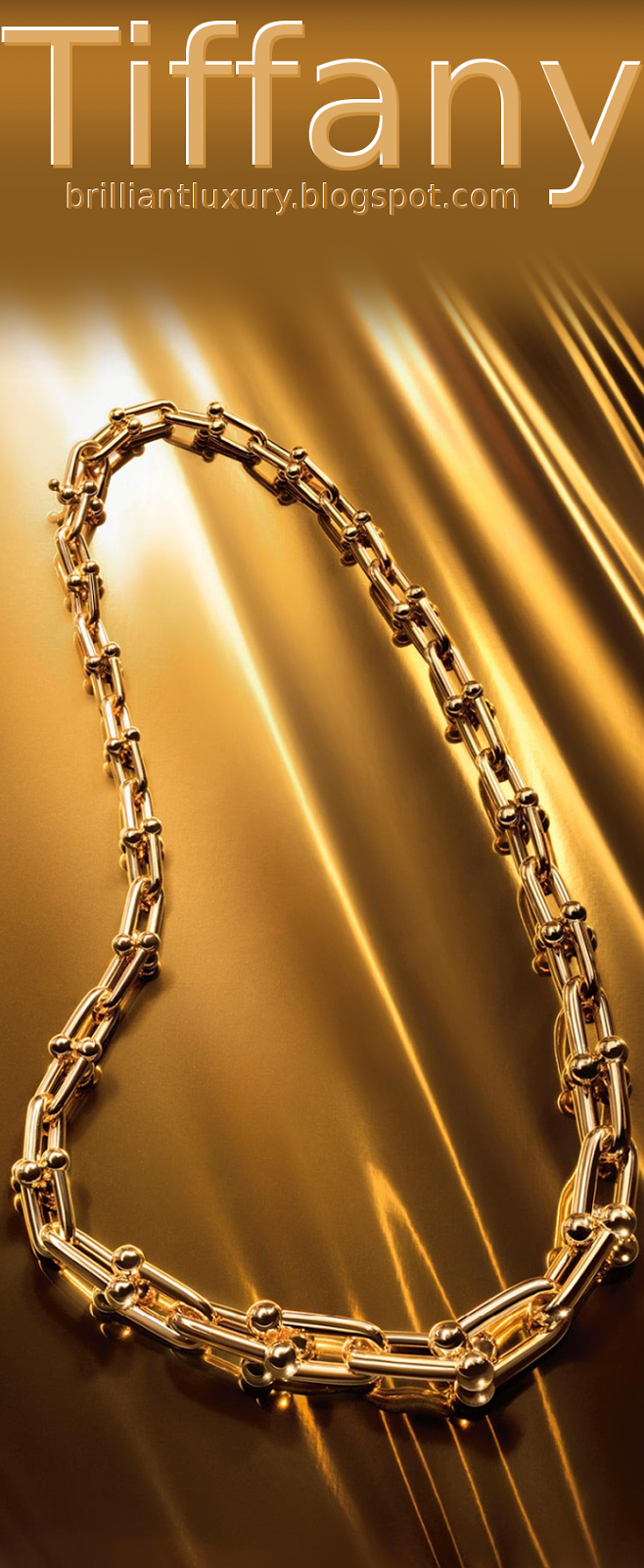 Brilliant Luxury ♦ Tiffany hardwear link necklace in 18k gold