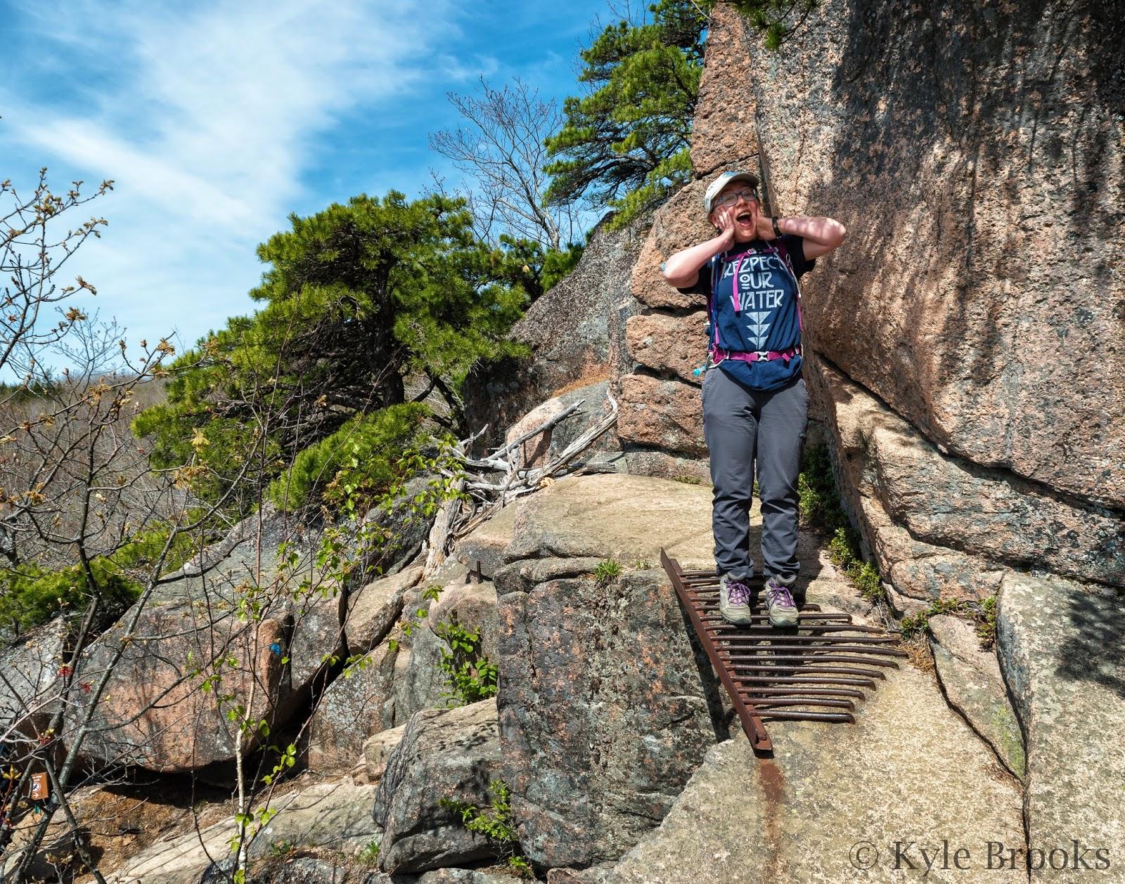 Metal Rungs The Beehive Trail