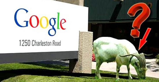 As 7 coisas mais bizarras que você não sabia sobre o Google