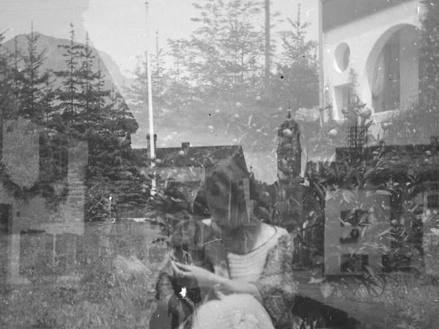 Detail - Doppelaufnahme einer Plattenkamera - Frau mit Hund in einer Straße und Foto vom Hotel - um 1914-1920