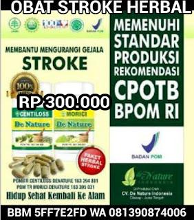 obat stroke terampuh